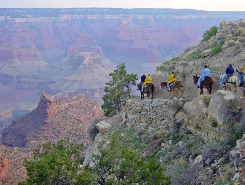 South Rim Grand Canyon Trail Ride.jpg