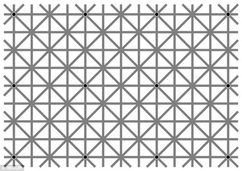 punti-neri-nel-reticolo-834031.jpg